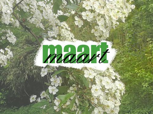 Welkom maart! Creativiteit en de lente