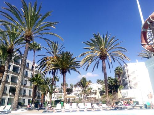 Week 40: onze vakantie op Gran Canaria