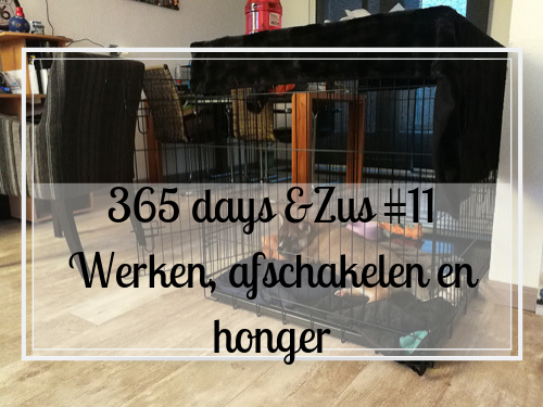365 days &Zus #11 werken, afschakelen en late honger