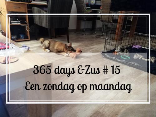 365 days &Zus #15 een zondag op maandag