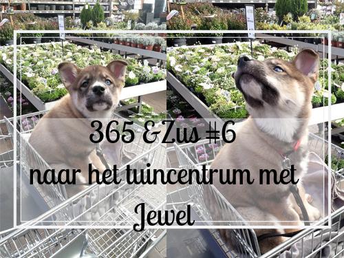 365 days &Zus #6 naar het tuincentrum met Jewel