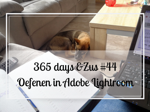 365 days &Zus #44 oefenen in Adobe lightroom