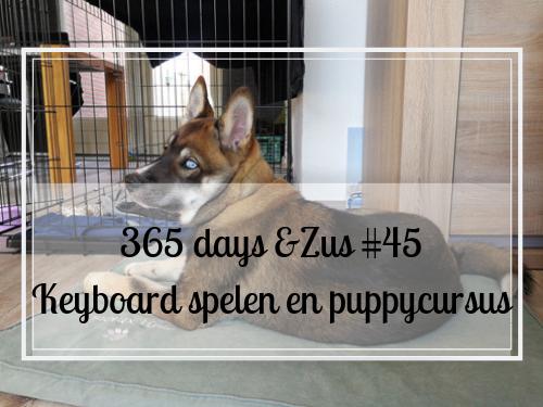365 days &Zus #45 keyboard spelen en puppycursus