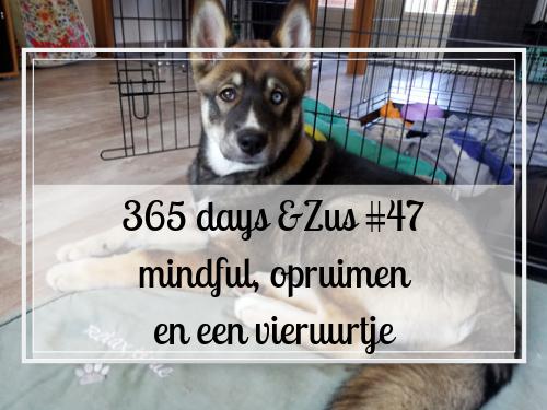 365 days &Zus #47 mindful, opruimen en een vieruurtje