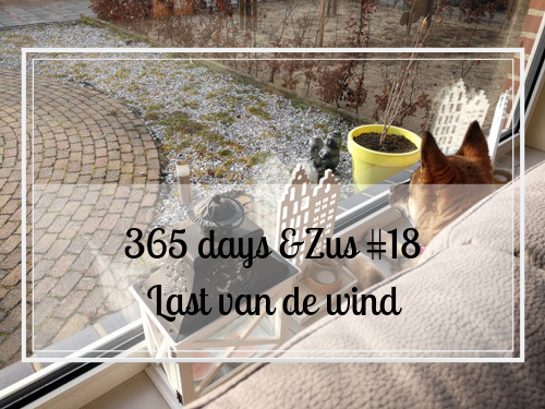 365 days &Zus #18 last van de wind