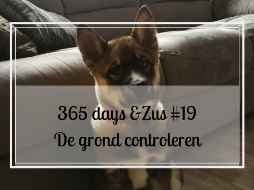 365 days &Zus #19 de grond controleren