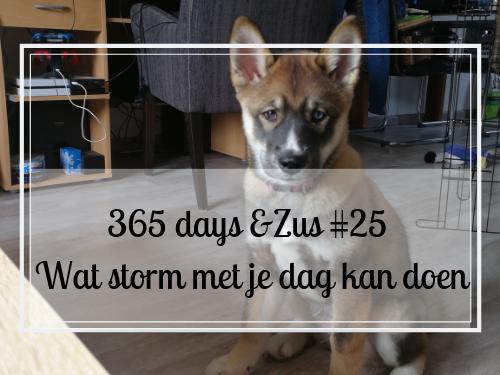 365 days &Zus #25 wat storm met je dag kan doen