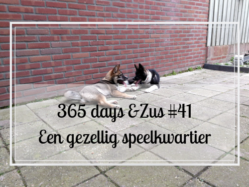 365 days &Zus #41 een gezellig speelkwartier