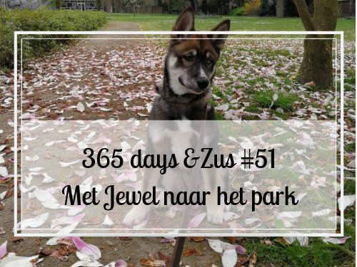 365 days &Zus #51 met Jewel naar het park