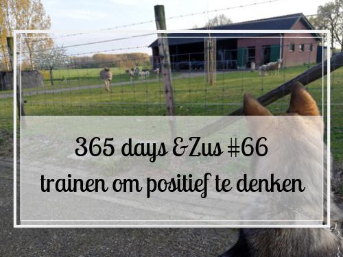 365 days &Zus #66 trainen om positief te denken