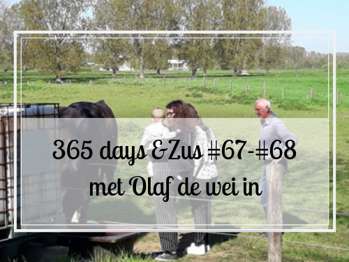 365 days &Zus #67-#68 met Olaf de wei in