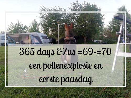 365 days &Zus #69-#70 een pollenexplosie en eerste paasdag
