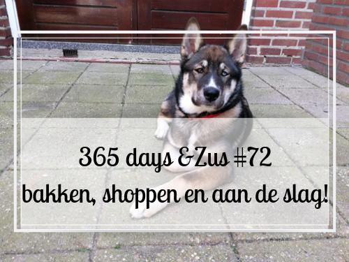 365 days &Zus #72 bakken, shoppen en aan de slag!