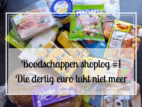 Boodschappen shoplog #1 Die dertig euro lukt niet meer