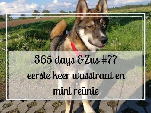 365 days &Zus #77 eerste keer wasstraat en mini reünie