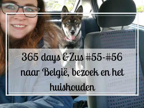 365 days &Zus #55-#56 naar België, bezoek en het huishouden
