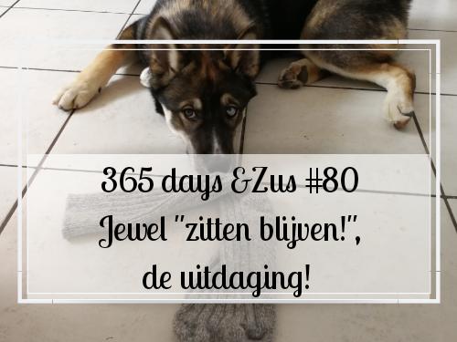 """365 days &Zus #80 Jewel """"zitten blijven!"""", de uitdaging!"""