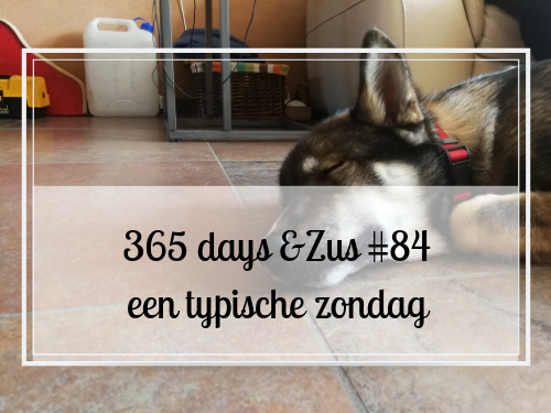 365 days &Zus #84 een typische zondag