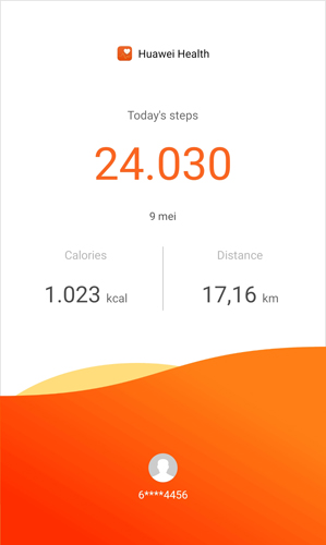 middag lopen