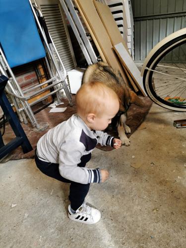 reserve fiets