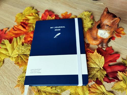 my journal 2020