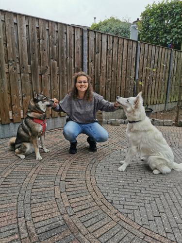&Zus update #39 nieuwe wandelschoenen en dogdancers training